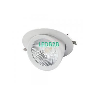 Gimbal LED Scoop Downlight