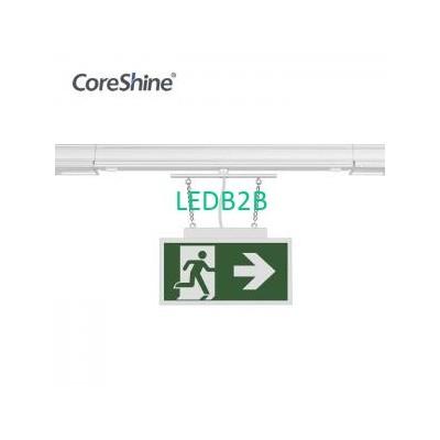 IP20 5ft Emergency Sign Module LE