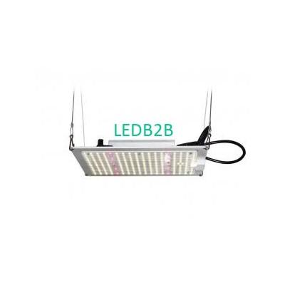 150W LED Grow Light Quantum Board