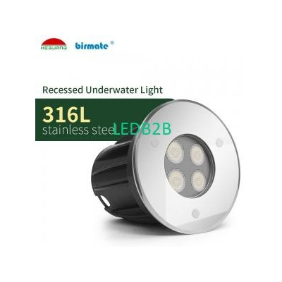 IP68 SMD3030 300LM Underwater Led