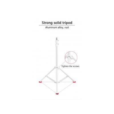Indoor 120PCS 160cm Tiktok Ring L