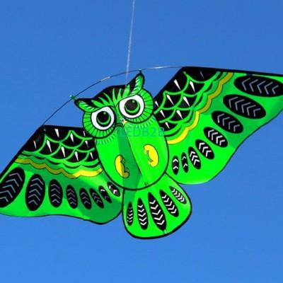NEW High Quality  Bird Kites / Ow