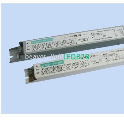 EBS Electronic Ballast