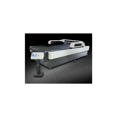 CJGS-250300LD double Y axis movin