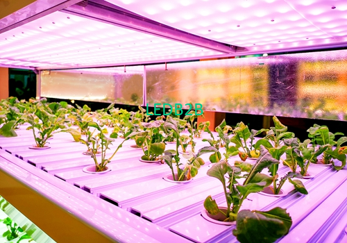 Heliospectra wins new order, LED growth light will be used for plant spectrum research