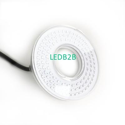 LED Fountain Light 10W