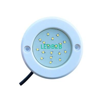 8MM LED Pool Light 2W