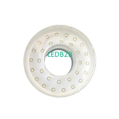 2W LED Fountain Light